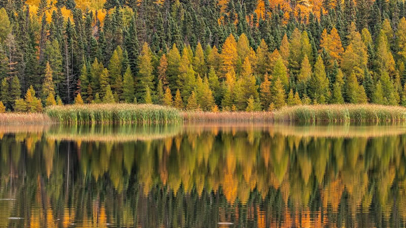 Autumn Reflections by Stino